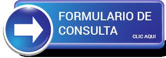 Boton formulario consulta